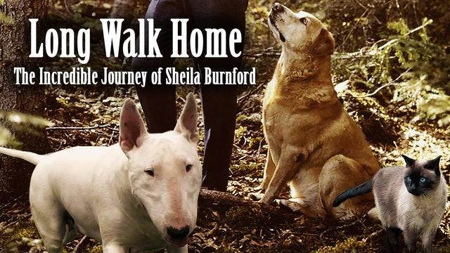 Long Walk Home- The Incredible Journey of Sheila Burnford
