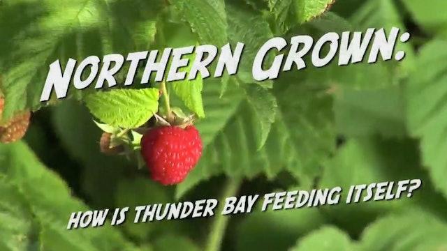 Northern Grown