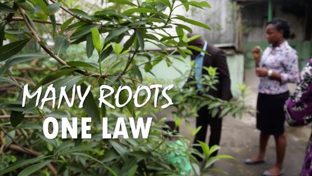Des racines, une loi/ Many roots, One...