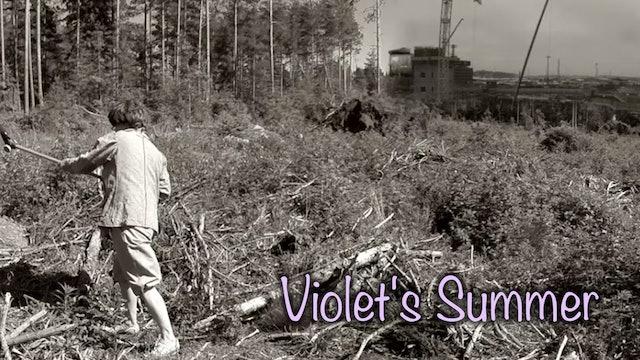 Violet's Summer