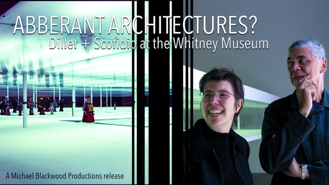 Aberrant Architectures? Diller + Scofidio at the Whitney Museum