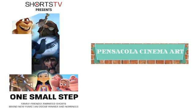 One Small Step 4 Pensacola Cinema Art