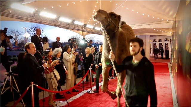 SAMSON on the Red Carpet