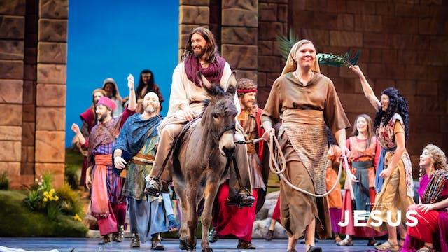 JESUS | Triumphal Entry