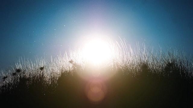 Sun Sparks (15m)