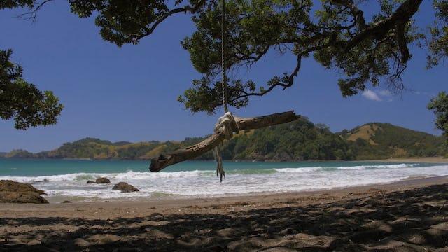 Swing into Summer (5m)