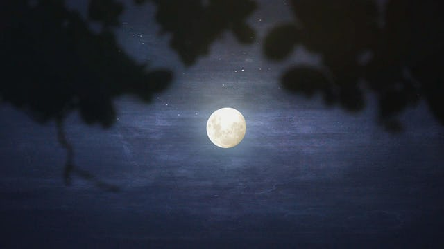 Moonlit (15min)