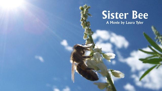Sister Bee Movie