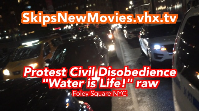 """Protest Civil Disobedience """"Water is Life!"""""""