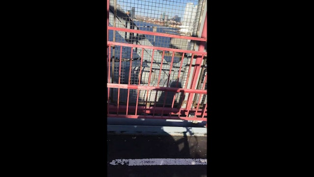 Cycling on the Williamsburg Bridge when a train comes along...422LT