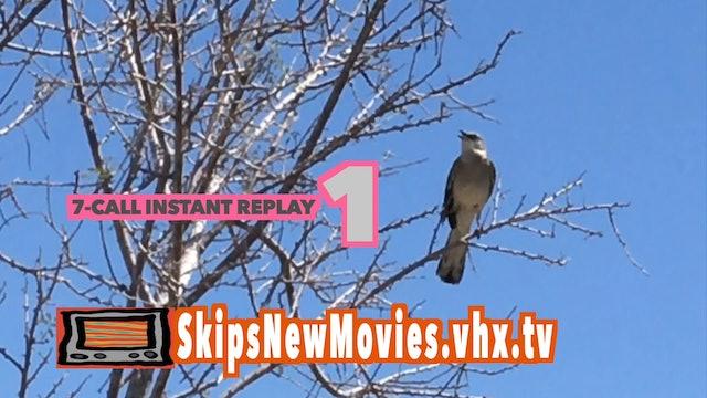 Mockingbird 7 calls in 12 seconds