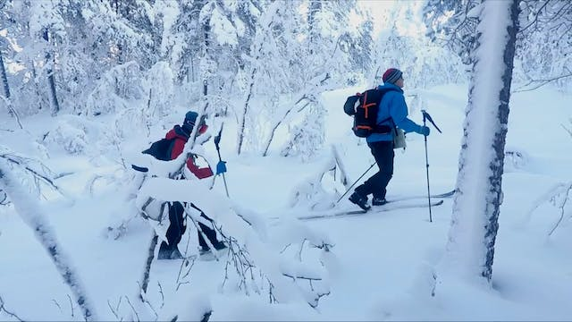 BACKCOUNTRY SKIING AT GRØNAHORGI (VOS...