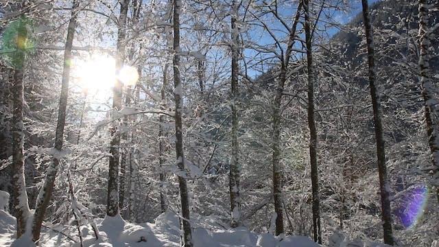 Winter in Bavaria - Berchtesgaden, Ge...