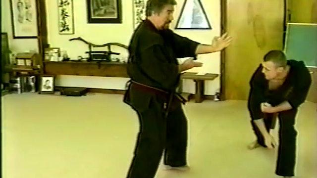 Kata to Kumite 3