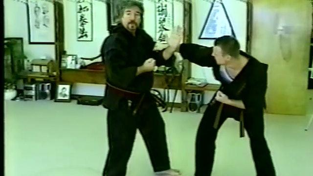 Kata to Kumite 4