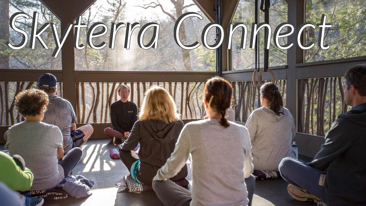 Skyterra Connect