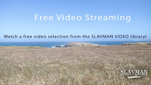 Free Video Streaming