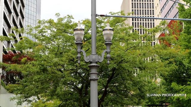 City Scenes - Portland Oregon