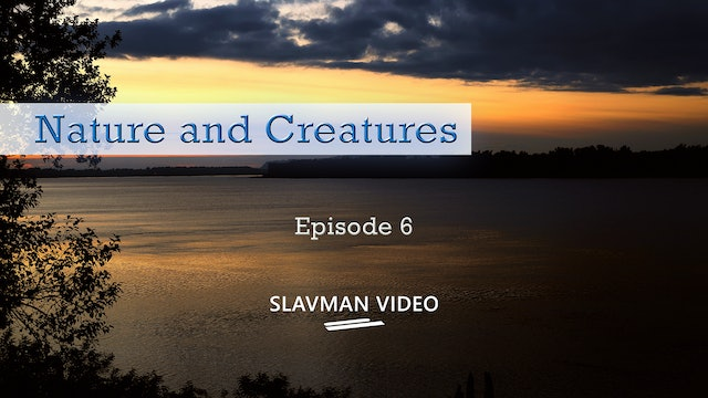 Nature and Creatures, Ep.6
