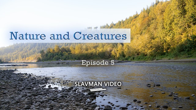 Nature and Creatures, Ep.5