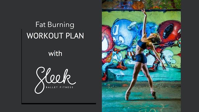Fat Burning Sleek Plan