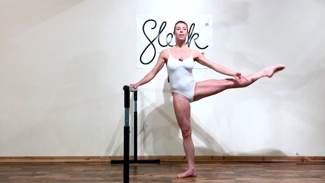 Sleek Barre Technique Catch Up