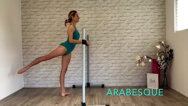 Sleek Barre Technique ™ - Learn