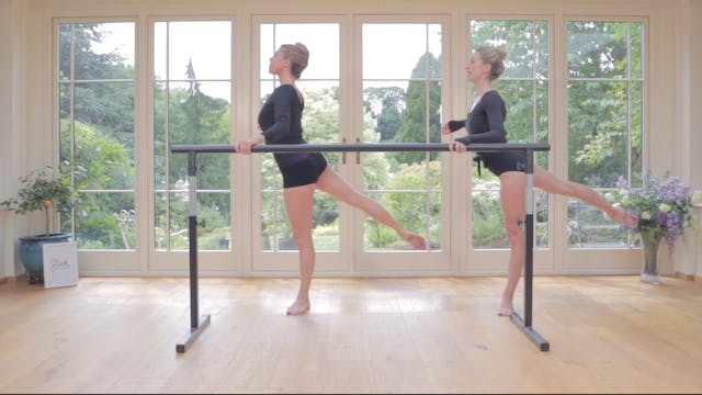 Sleek Barre Technique ™ - Move