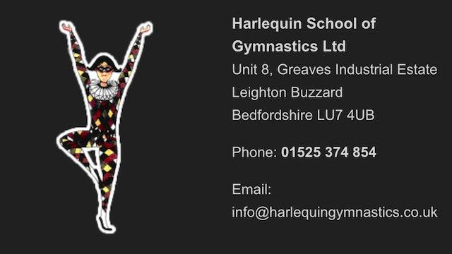 Harlequin Gymnasts Workout Program