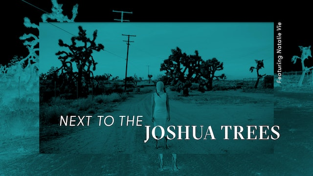 Next to the Joshua Trees featuring Natalie Vie for Flaunt Magazine