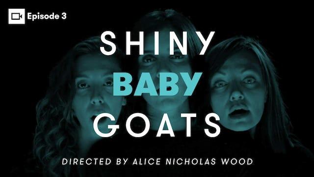 SHINY BABY GOATS: Episode 3 | Alice Nicholas Wood
