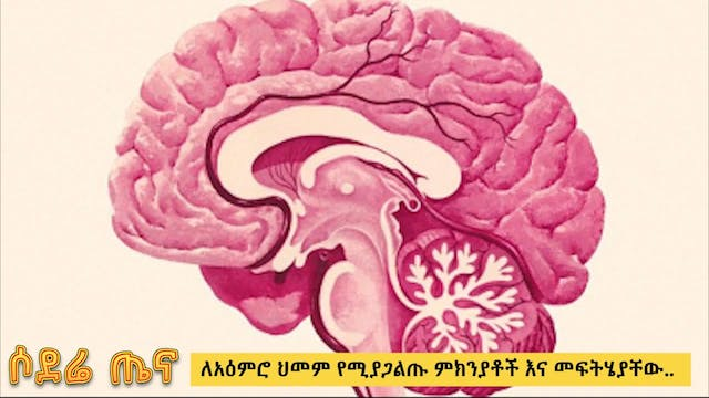 Brain health - causes and treatment