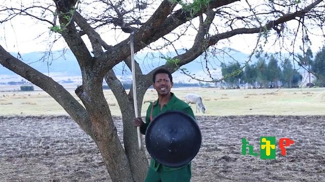 Derejea Shumi ethio
