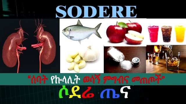 7 food and drink for healthy kidney
