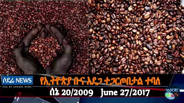 Ethiopia coffee farming faces uncerta...