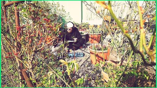 """Simon Spiess – """"Ambient Garden"""""""