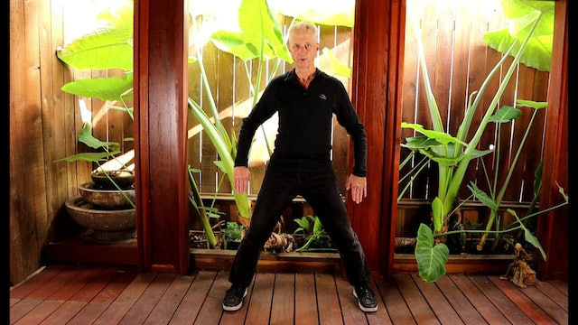 TAI CHI CONNECTIVE MEDITATIONS COMPLETE PRACTICE