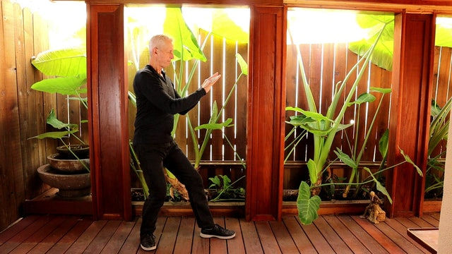 PUSH  OF THE TAI CHI CONNECTIVE MEDITATIONS LESSON