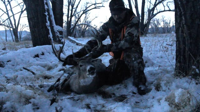 4.10 WY and MT Whitetail with Remi Warren