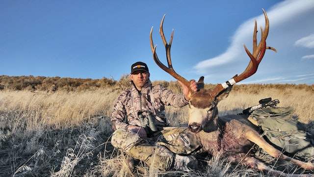 Gale Force Bow Hunt ep 6.13 Rutting Mule Deer with Tim Burnett