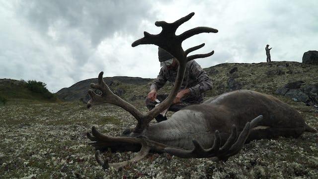 7.8 Rad Dad - Alaska Caribou with Remi and Dan Warren