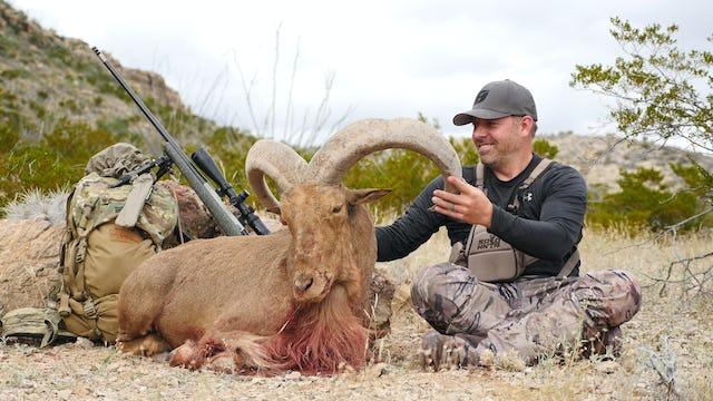 8.2 DUSTY DESERT RAMS - Free Range Aoudad Ram with Tim Burnett