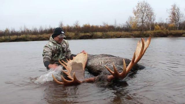 4.7 Alaska Moose with Tim Burnett