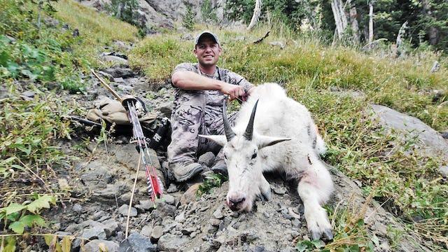 webEX Thunderhorn Mountain Goat with Boyd Burnett