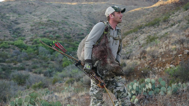 7.12 Bowhunters Dream - Javelina / Ao...