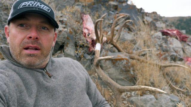 8.8 OPEN COUNTRY BULLS - Archery Elk in ID with Tim Burnett