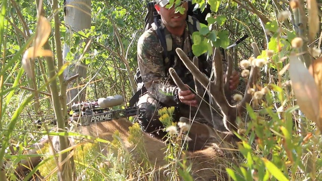 5.1 Nevada Archery Mule Deer with Tim Burnett