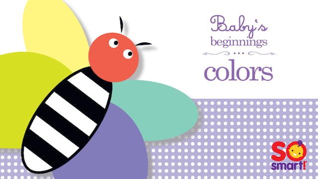 Baby's Beginnings: Colors