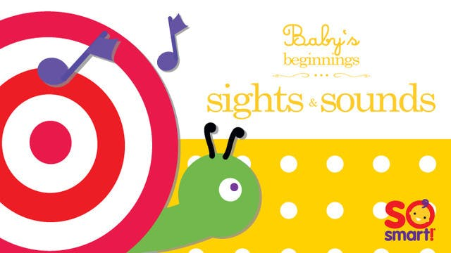 Beginnings - Sights & Sounds