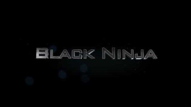 Lion Cubs Present: Black Ninja